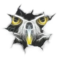 Avatar for owl power