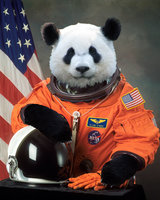 Avatar for First Time Astronaut