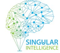 Avatar for Singular Intelligence