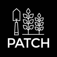 Avatar for Patch