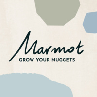 Avatar for Marmot.finance