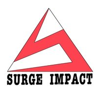 Avatar for Surge Impact Foundation