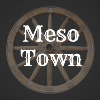 Avatar for MesoTown - Crowdfunding for Startups