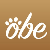 Avatar for OBE, Inc. (say oh-bee)