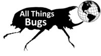 Avatar for All Things Bugs