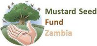 Avatar for Mustard Seed Fund