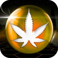 Avatar for CannaData