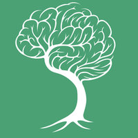 Avatar for Treetop Growth Strategy