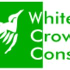 Avatar for White Crow
